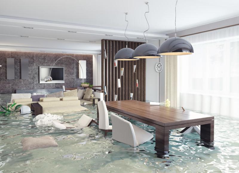 Insurance Housing - Platinum Suites